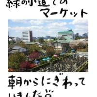 本日(4/28)の風景