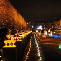 誰も星を見ない光の祭り~昭和記念公園