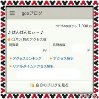 ☆ 祝・1000日 ☆