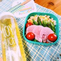 春のサラダ弁当♪ さっぱりコールスロー