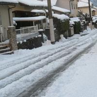 雪の大学入試センター試験