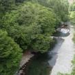 涼を求めて奥多摩、 川苔山へ 【ソロ編】