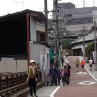 10/23(日)、「河内長野WALK&RUN」クラブ、定例会!