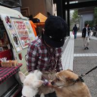 赤坂でアメリカに会う