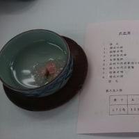 入学式シリーズ、加古川中学校から