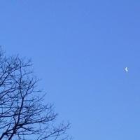 旧暦2月25日の月
