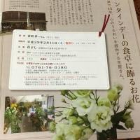 バレンタインデーの食卓に飾るお花 ~ まち塾①「花よし」