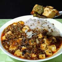 麻婆豆腐 with B
