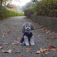 金沢公園♪