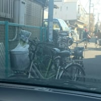 平和な日本🎵