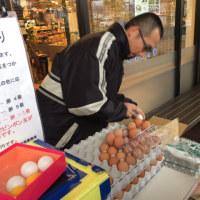 卵のつかみどり