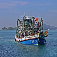 違法漁民を逮捕    タイ
