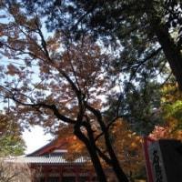 那谷寺と片山津温泉でのランチ