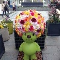 花いっぱいの横浜♪