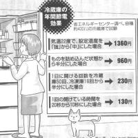 節電、まず冷蔵庫から!