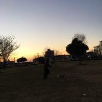 夜明け前の散歩