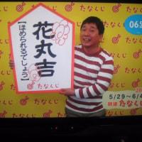 桜燕日記 May 29, 2017