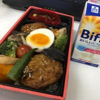 今日のお昼ご飯 越後産大豆使用豆腐ハンバーグの野菜たっぷり重
