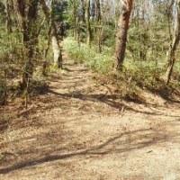 第13回 ハイキングに行こう! 「炭ヶ谷・徳川道コース」 下見編