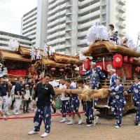 八雲神社の秋祭りで、今年も山車が🎵