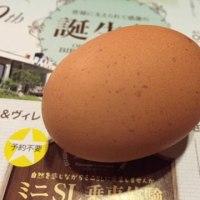 大江の郷の卵