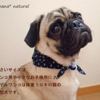 ★今年もネッククーラーの型紙&レシピ★