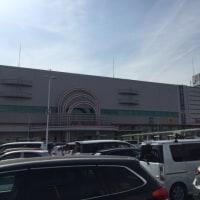 東京タラレバ娘・見たよ→横浜開花→外出・車