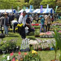 緑と花のフェスティバルへ