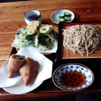 へぎ蕎麦とタレかつ丼
