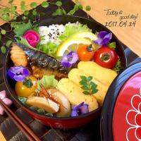 本日の塾弁当❤︎鰆の西京焼き