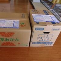 芋煮会(里芋汁)の季節です!