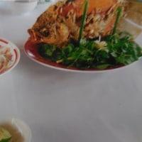 カニミン~fromベトナム