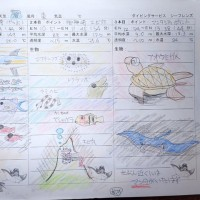 梅雨ですが100本記念ダイビングー!!