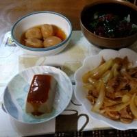 4月22日夕 豚肉と玉ねぎのオイスターソース炒め