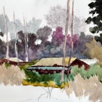 画家 関 誠一郎 (  心は燃える⑲  ) ・・・・井の頭公園で
