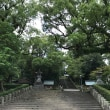 霧島神宮👉鹿児島神宮👉指宿👉天文館