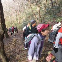 ⑥ 鈴ヶ峰山~鬼ヶ城山縦走登山 : ウグイス園地  UP2日目