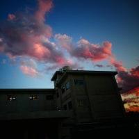 『夕陽』 高校三年生