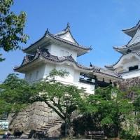 五月晴れ 伊賀上野城