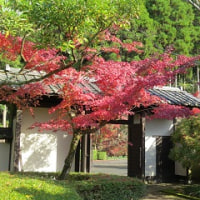 錦秋の西渓公園と多久聖廟