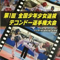 第1回全日本少年少女選抜テコンドー選手権大会パンフレット