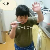 琉(りゅう)くんの歯磨き