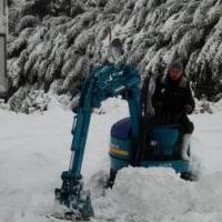 闘病日記1/23(月)・・・雪
