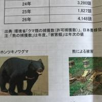 熊のプーさんやっぱりハチミツ狙い!ノルディックウォーキングで養蜂事業へ