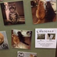 『ねこ休み展 冬 2017』