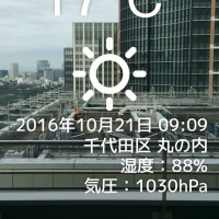 今日は涼しいのかな?