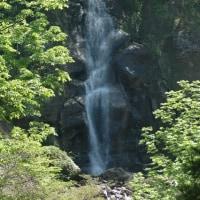 瀬戸蔵山自然観察会(龍神の滝コース)