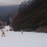 人生初の奥伊吹スキー場へ