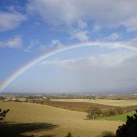 虹 と リース