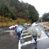 🎵 今学期最後の見送り当番は、 春の雨降る早朝に「いってらっしゃ~い!」